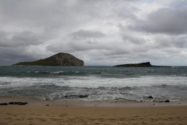 Hawaii Urlaub 2064 (Custom)